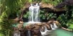 Natural Hot Springs in La Fortuna- Google
